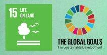 global-goals-15-life-on-land-jpg__731x380_q85_crop_subsampling-2_upscale
